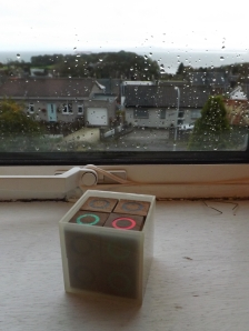 The cubes in their home, on a rainy day