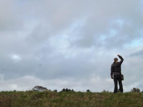 Hawk trainer at the Scottish Deer Centre