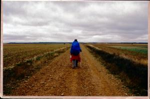 Walking the meseta