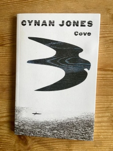Cover image of Cynan Jones's Cove