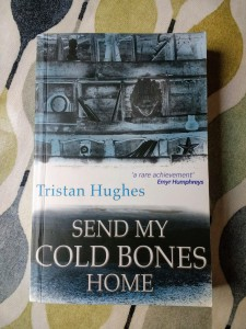 Cover image of Tristan Hughes's Send My Cold Bones Home