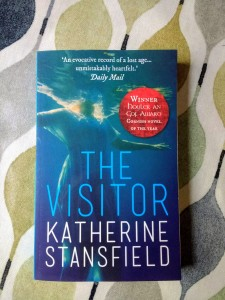 Cover image of Katherine Stansfield's The Visitor